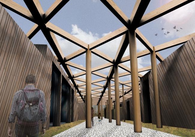 Under Canopy View, Sevenoaks Wildlife Center